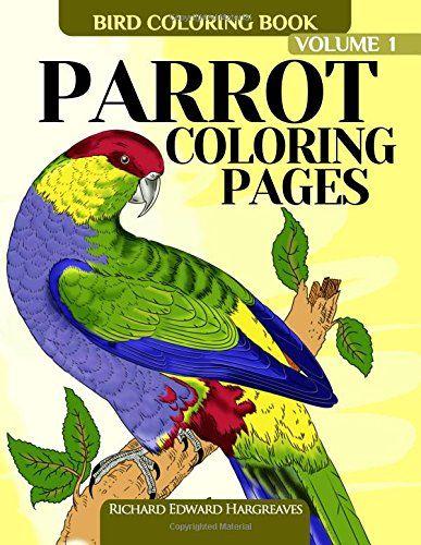 78 Best Birds Images On Pinterest