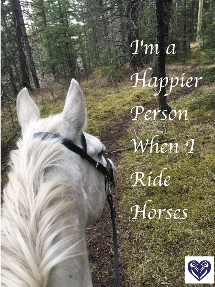I'm a Happier Person when I Ride Horses. Horse quote.