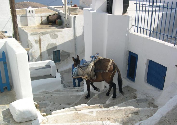 Did you know that on several Greek Islands cars (and often motorcycles also) are not allowed? - Travel the Greek Islands and experience island life & all it has to offer with #Five Star Greece. #LuxuryVillas #HolidayMatchmakers