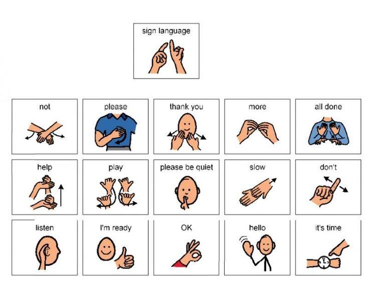 Baby Sign Language | Baby Sign Language Basics - YouTube