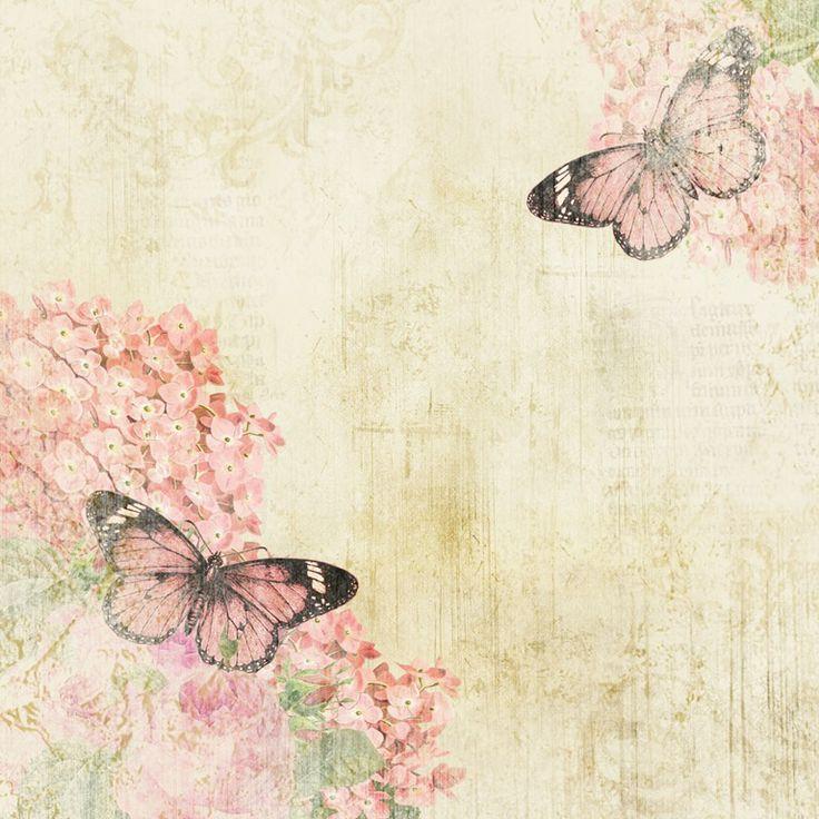 [Butterfly%2520Garden%25201%255B6%255D.jpg]