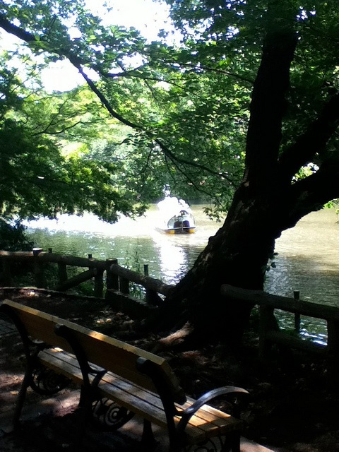 Inogashira imperial Park in Tokyo