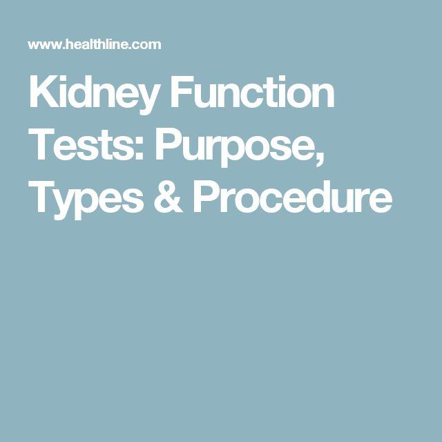 Kidney Function Tests: Purpose, Types & Procedure
