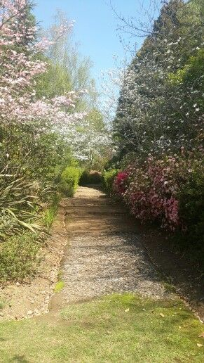 Applegarth, Hogsback, an absolute must is to tour this exquisite garden if you are a flower lover