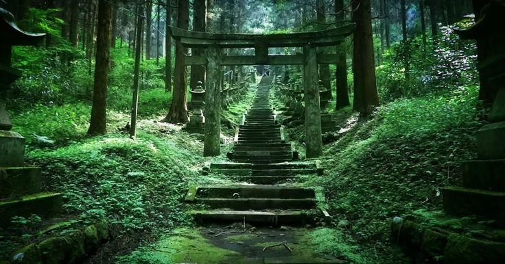"""上色見熊野座神社が「神秘的すぎる」と話題になっています。日本には多くの神社があり、どれも荘厳な雰囲気を漂わせています。近年では""""パワースポット""""と呼ばれることも増えてきましたね。自然と融合した芸術的な景色は、思わずため息が出るほど素敵ですが、この中でも特に、別世界へと誘われるほどスピリチュアルな景観を誇っているのだとか。永遠に続くような階段、常世とは思えぬ空気、ヒスイ色にぼんやり揺れるコケや木々・・・幻想的な異次元空間へ、あなたをご招待します。本当に神秘的すぎます!熊本県の阿蘇郡にある上色見熊野座神社(かみしきみくまのいますじんじゃ)。パワースポットとしてとても有名な場所なのですが、あまり.."""