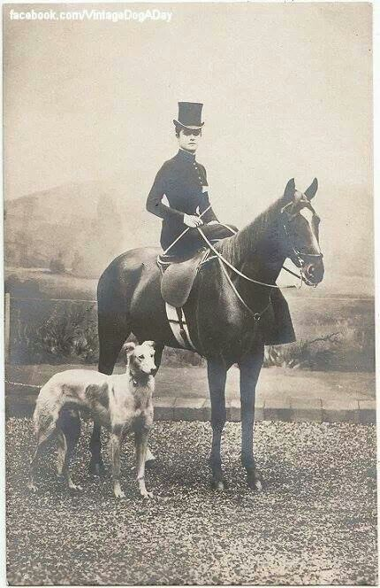 A lady astride her hunter with her Borzoi in 1910. Borzoi dog art portraits, photographs, information and just plain fun. Also see how artist Kline draws his dog art from only words at drawDOGS.com #drawDOGS http://drawdogs.com/product/dog-art/borzoi-dog-portrait-by-stephen-kline/