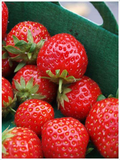 Prince de Bretagne:Mara des Bois / #strawberries