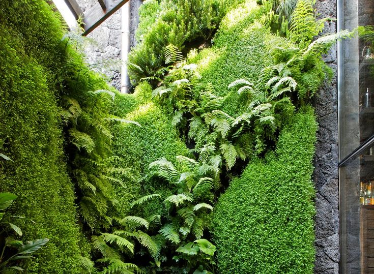 1000 images about jardines verticales big on pinterest for Verde vertical jardines verticales
