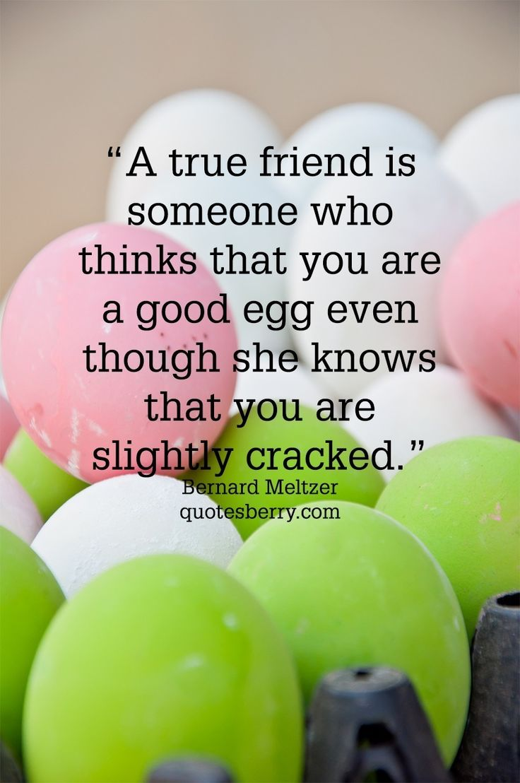 Friendship Quote Brainy : Brainy quotes awesome wallpapers wallpaper