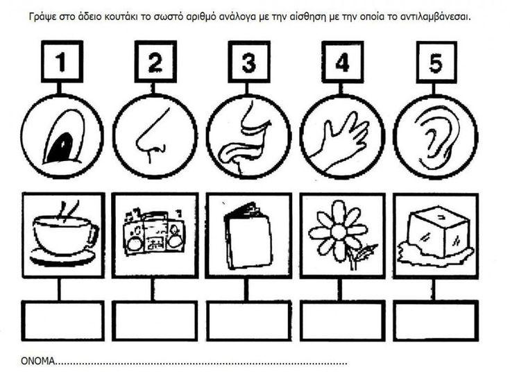 5 senses worksheet for kids (12) | Crafts and Worksheets for Preschool,Toddler and Kindergarten