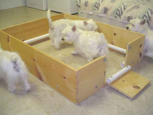 How To Make A Simple Whelping Box For Our Furbabies