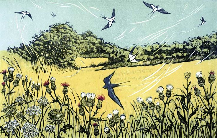 https://www.youtube.com/channel/UCet0ZzTzDPR-A21qyImZzWw Bayfield Swallows linocut 18 x 28 cm £150