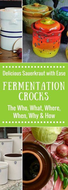 Fermentation Crocks: The What? Why? Who? Where? When? and How? of fermenting in a water-sealed crock with weights and lid. Ferment your sauerkraut with ease. What to look for when buying a crock, what size to buy, when to ferment. We've got you covered. | makesauerkraut.com via @makesauerkraut