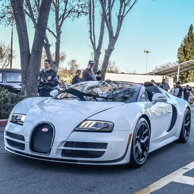 341 Best Images About Bugatti Veyron On Pinterest: 6659 Best Bugatti Images On Pinterest