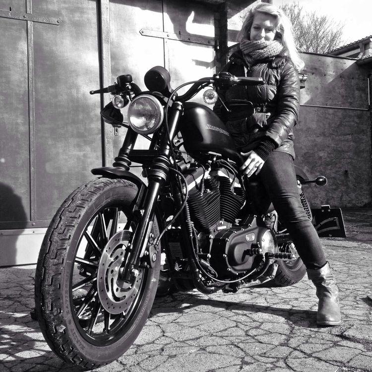9 Splendid Clever Tips: Harley Davidson Signs Logo harley davidson tattoos forearm.Harley Davidson Cafe Racer Helmets harley davidson girl pin up.Harley Davidson V Rod Roads..