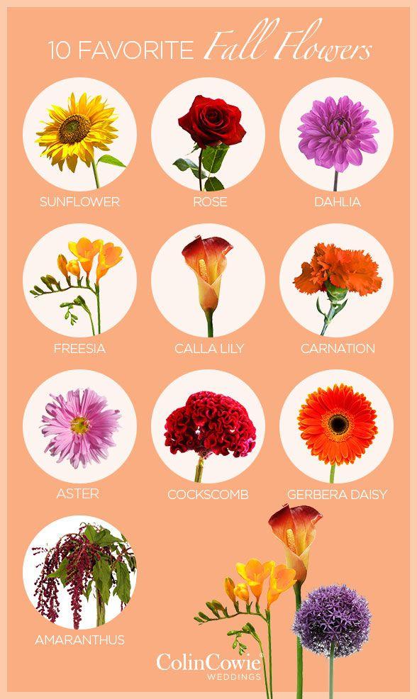 10 favorite fall wedding flowers mightylinksfo