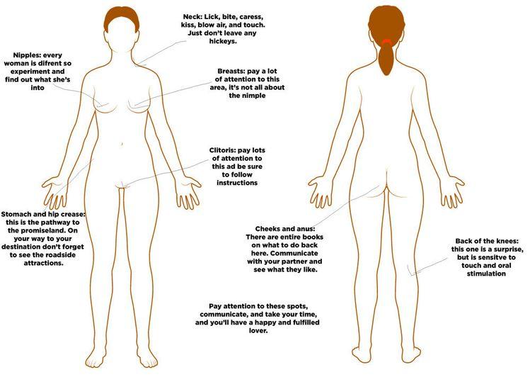 7 erogenous zones on men