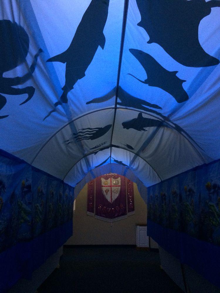 Under the sea at Deep Sea Discovery 2016 at Central Baptist, Albany, GA 2016 - aquarium tunnel.