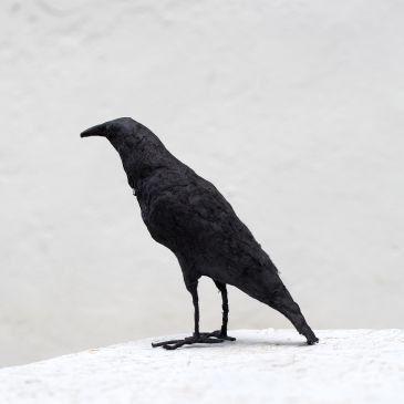 paper mache sculpture raven sculpture father s day crow
