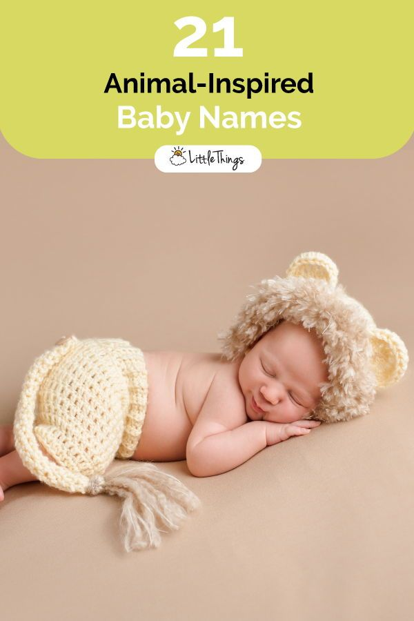 21 Baby Names for Parents Who Love Animals