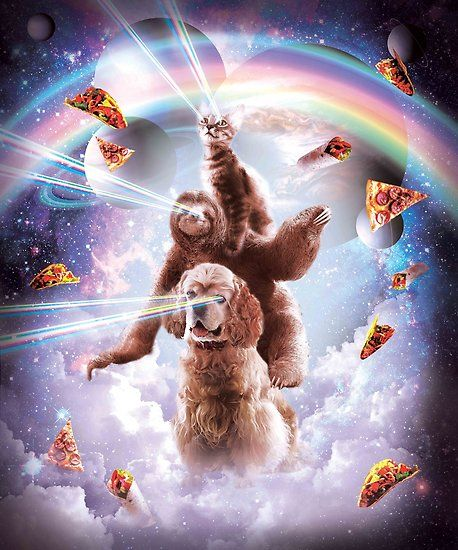 cc791a0f1 Buy 'Laser Eyes Space Cat Riding Sloth, DogRainbow' by SkylerJHill as a T
