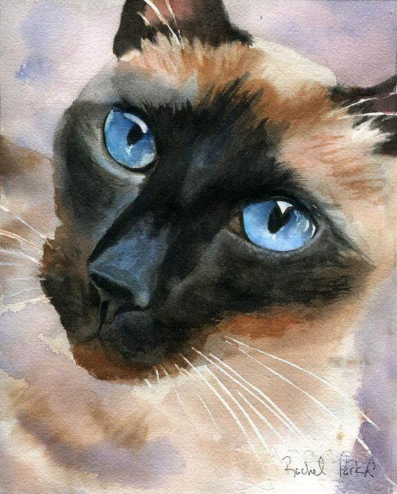 SIAMESE CAT Art Print 11 x 14 Painting by Watercolor Artist DJR w//COA