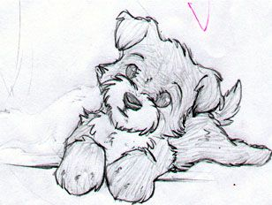 Yorkie Puppy Drawings Images