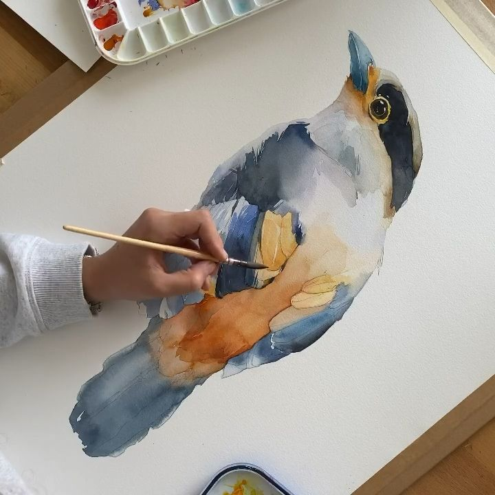 Silver-breasted Broadbill by Polina Bright -  - #Bright #Broadbill #Polina #Silverbreasted