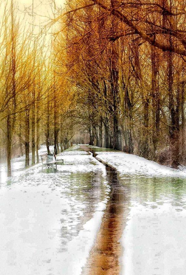 Walking through the snow - Sentiero, Italy