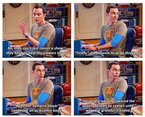 Sheldon sums up the ending of TV shows perfectly