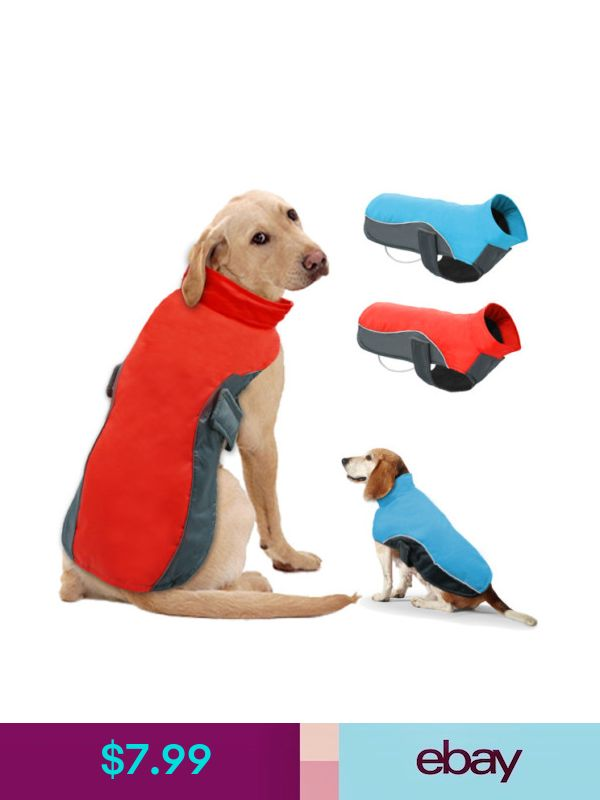 e661faae434 Didog Pet Jackets  ebay  Pet Supplies