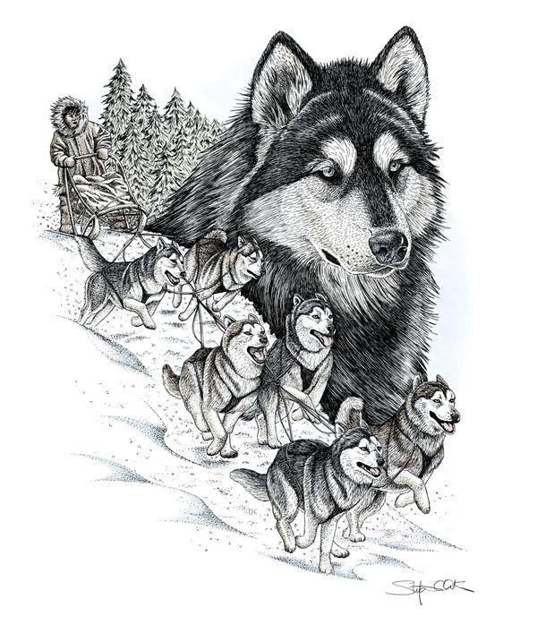 Pen and Ink by Stefanie Clark, via Behance #Art #Wolves #Wolf