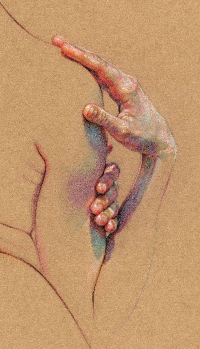 Desenhos anatômicos compostos de cores hachuradas de WanJim Gim