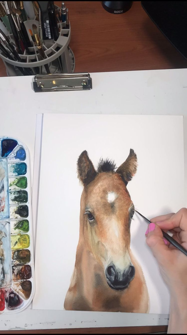 Baby Horse Watercolor Time Lapse Video