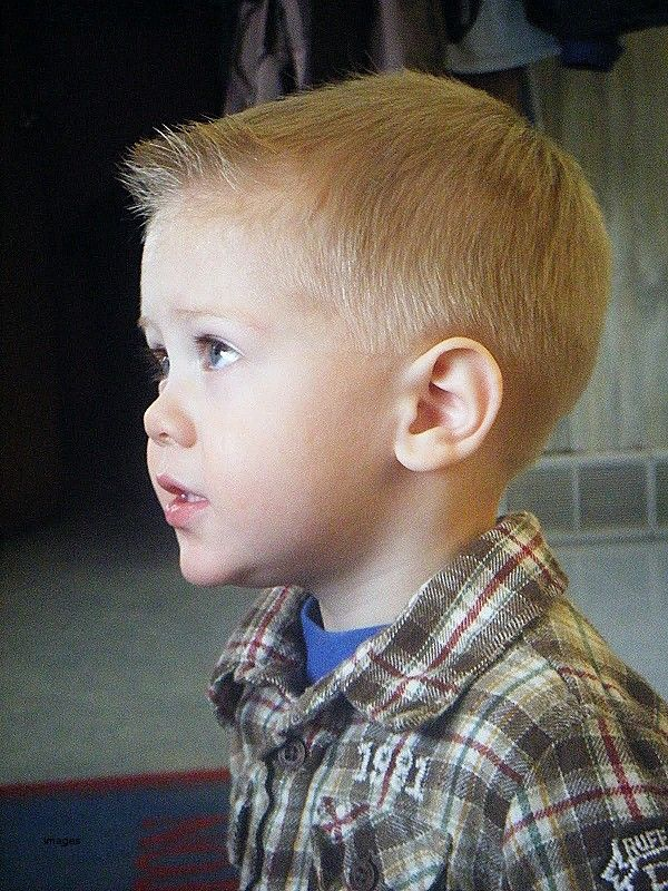 Cute Hairstyles For 4 Year Olds Unique Toddler Boy Haircuts
