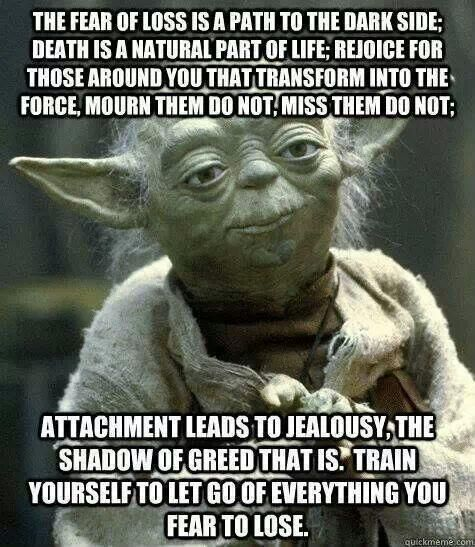 The Fear Of Loss Is A Path To The Dark Side Death Is A Nat