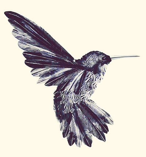 1000 images about tattoo ideas on pinterest feather hip for Hummingbird hip tattoo