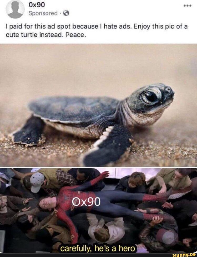 Picture memes 1VIDGJn57: 1 comment — iFunny