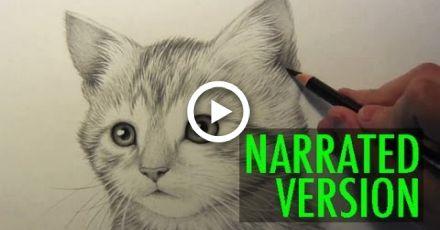 Como desenhar um gatinho: Narrado passo a passo