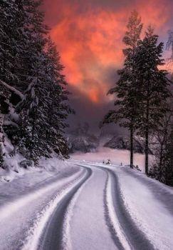 Winter Back Road