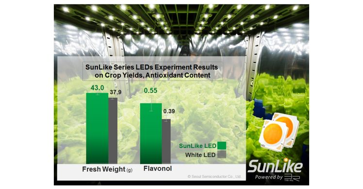Experiments Demonstrate Seoul Semiconductor SunLike Series Natural Spectrum LEDs Enhance Crop Yields, Antioxidant Content