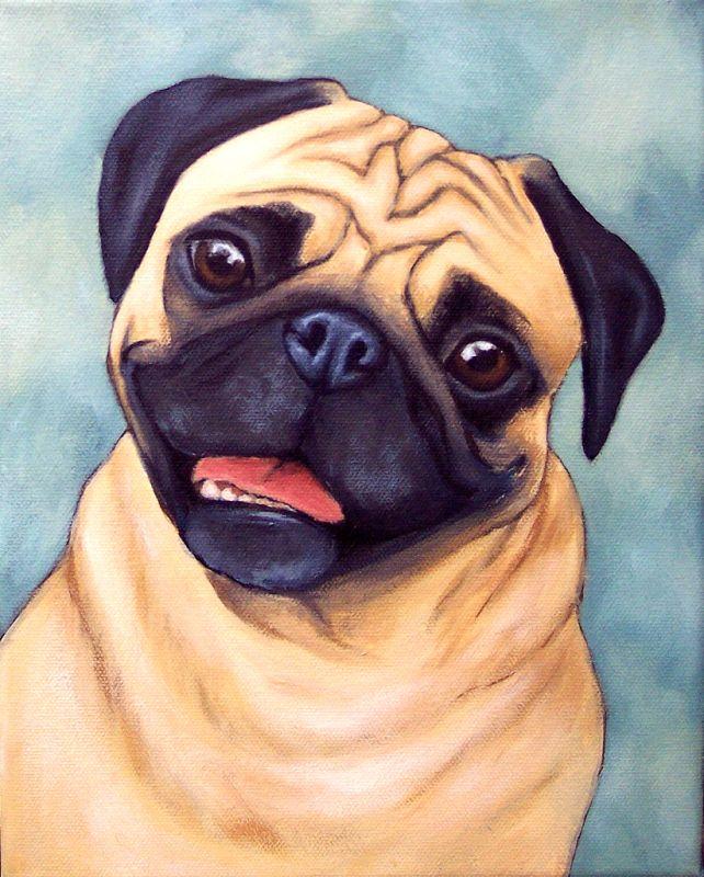 Позитива, прикольные картинки и рисунки собак