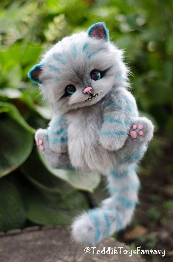 Cheshire Kitten (sob encomenda)