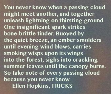 The Ellen Hopkins Quote Of The Day Is From Tricks