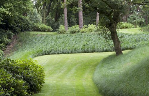 Tuinaanleg siergazon jan joris tuinarchitectuur