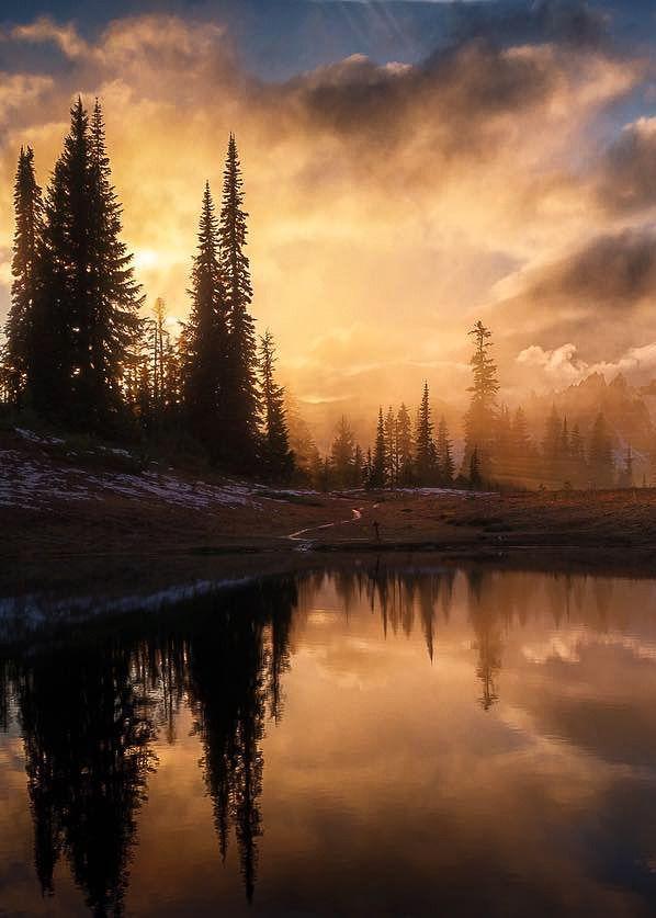 "coiour-my-world: ""Tipsoo Lake, Mt Rainier | steveschwindt """