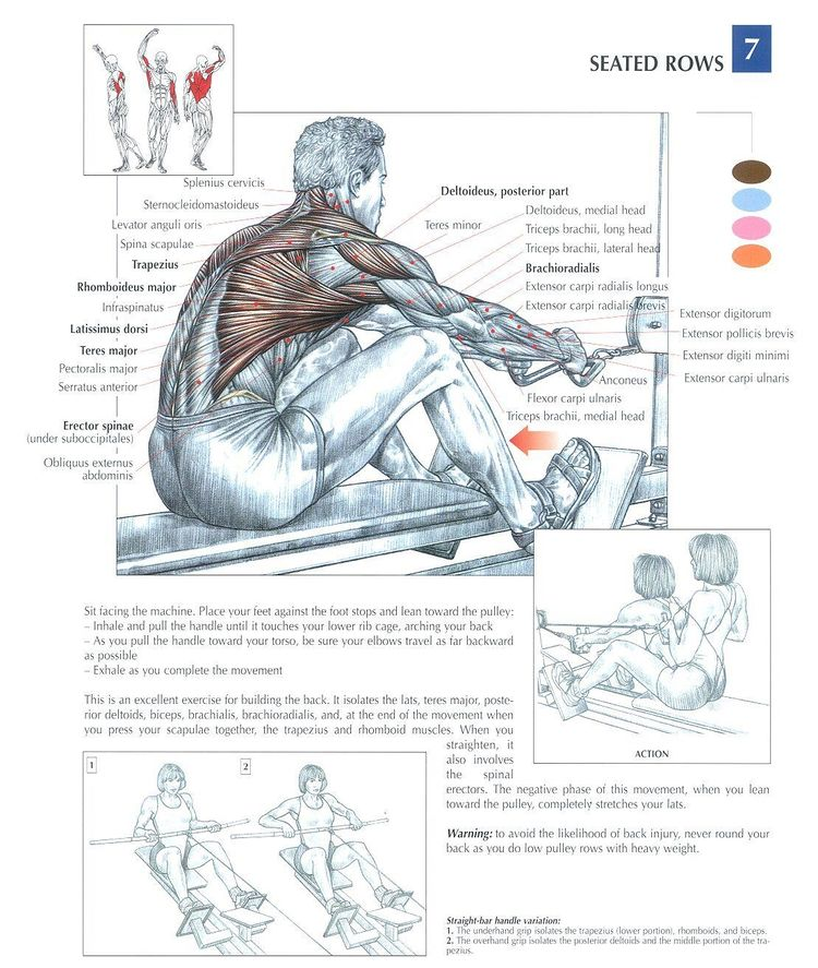Seated Rows ~ Repinned by Crossed Irons Fitness
