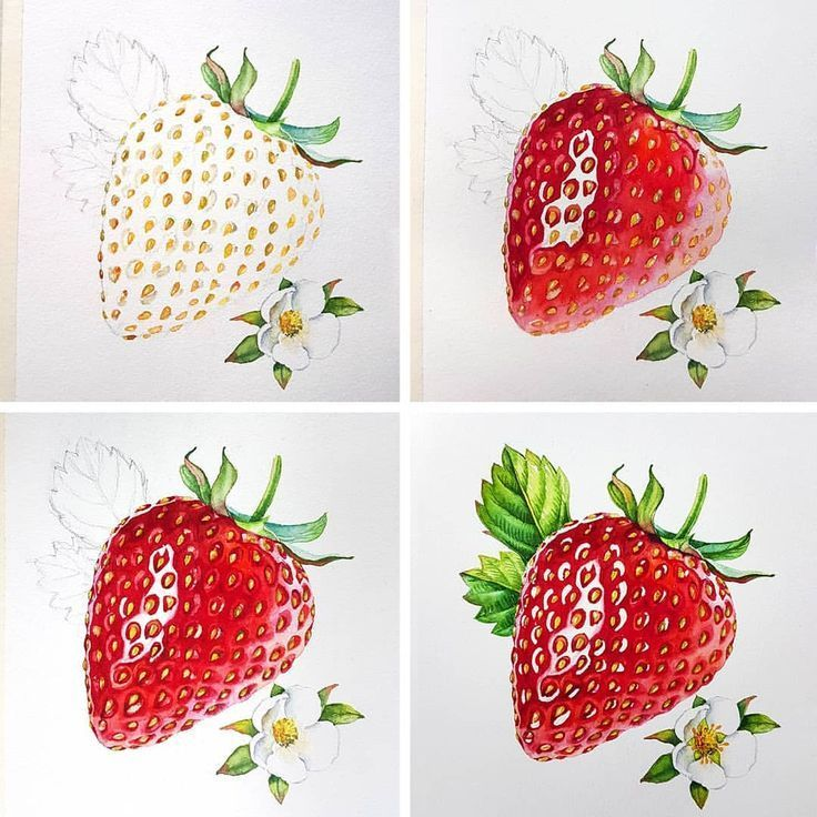 This strawberry unexpectedly became my most popular image here on Instagram. Tha… Unexpectedly, this strawberry has become my most popular…