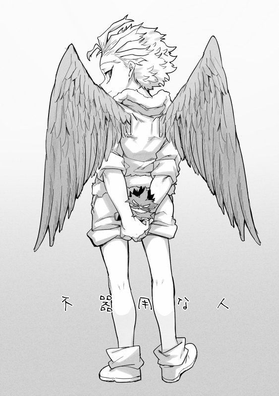Hawks & Endeavor Enji Todoroki Boku no Hero Academia BNHA M