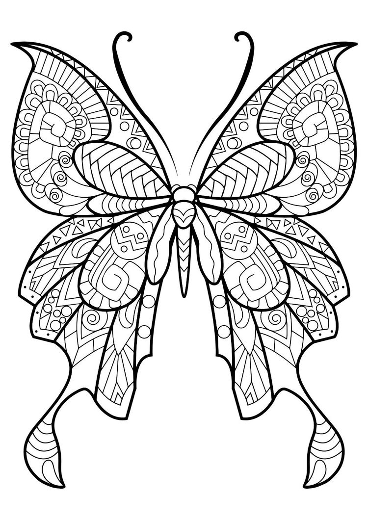 Adult Butterfly Coloring Book This Adult Coloring Book Wi